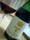 Yoichi2010
