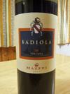 Badiola08